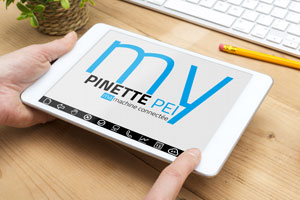 tablette My Pinette 2
